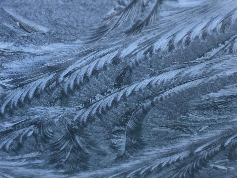 windshielffrozen